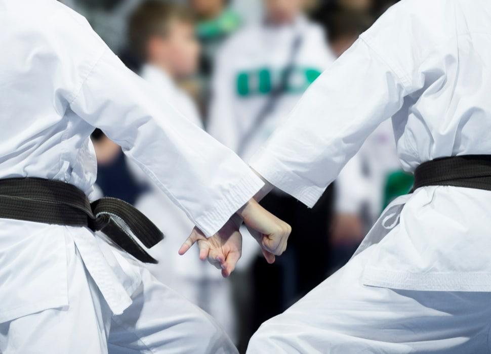 Karate club management image